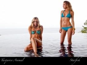 Обои Candice Swanepoel: Купальник, Море, Девушка, Девушки