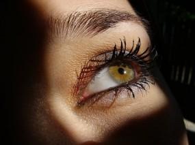 Обои Карий глаз: Девушка, Взгляд, Глаз, Девушки