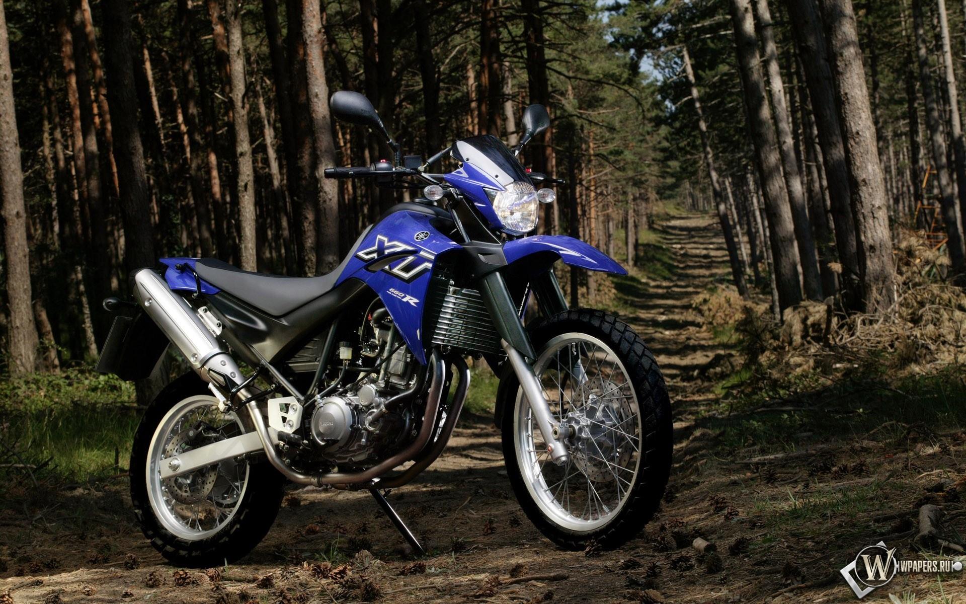 Синяя ямаха в лесу 1920x1200