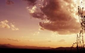 Обои Вечерний пейзаж: Облака, Трава, Небо, Пейзаж, Растения, Природа