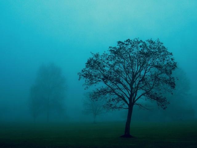 Голубой туман