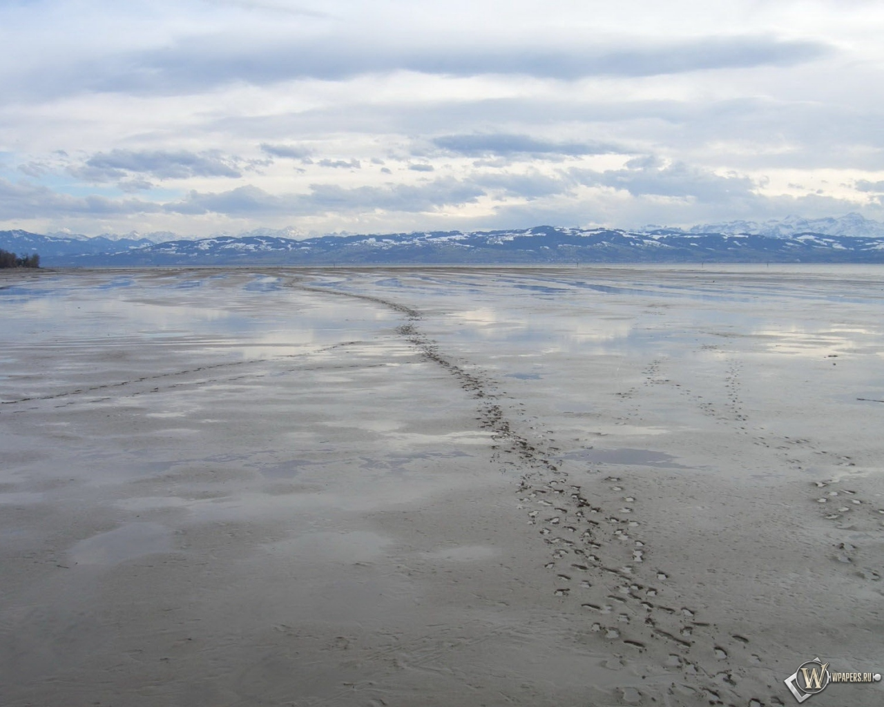 Muddy Background 1280x1024