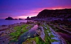 Обои Пейзаж в фиолетовых тонах: Вода, Камни, Скалы, Мох, Природа