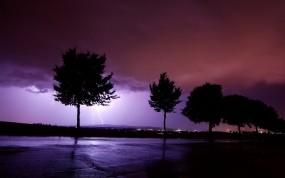 Обои Сиреневая гроза: Деревья, Молния, Буря, Природа