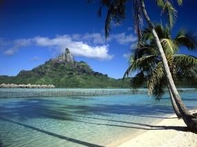 Обои Бора-Бора: Пальмы, Пляж, Бора-бора, Природа