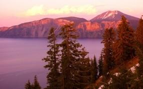 Обои Коричневый рассвет: Океан, Скалы, Рассвет, Елки, Природа