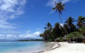 Обои Мальдивы: Пальмы, Пляж, Песок, Небо, Вода и небо