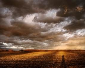 Обои Мрачное небо: Облака, Поле, Тень, Небо, Природа