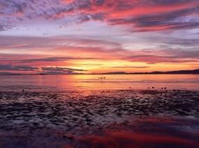 Обои Морской закат: Море, Закат, Горизонт, Природа