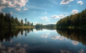 Обои По течению: Отражение, Вода, Деревья, Небо, Природа