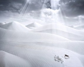 Обои Пустыня ночью: Пустыня, Фантазия, Рисунок, Природа
