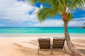 Обои Пляж с пальмами: Пальмы, Пляж, Лето, Острова, Природа