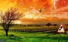 Обои Знак Осторожно Летят воздушные шары: Поле, Знак, Дерево, Шары, Природа