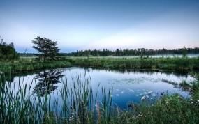 Обои Голубое озеро: Туман, Озеро, Трава, Небо, Вода и небо