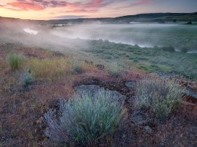 Обои Утро в поле: Река, Туман, Поле, Трава, Утро, Природа