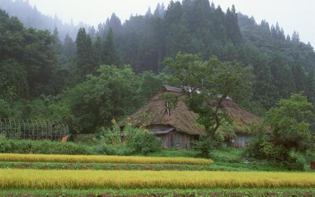 Японская хижина в лесу