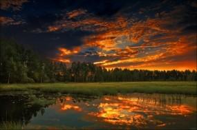 Обои Летний закат: Лес, Закат, Вечер, Лето, Природа
