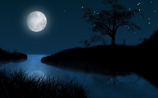 Картинки по запросу картинка лунная ночь