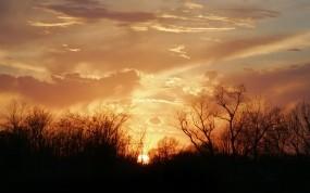 Обои Закат: Облака, Деревья, Солнце, Закат, Вода и небо