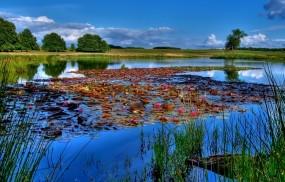 Обои Рыбалка: Река, Вода, Озеро, Небо, Лилии, рыбалка, Природа