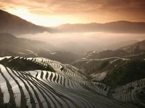 Обои Рисовые поля в Китае: Горы, Туман, Склон, рис, Природа