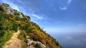 Обои Зелёная скала: Зелень, Вода, Океан, Небо, Скала, Природа