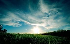 Обои Grassy Sunset: Облака, Закат, Трава, Небо, Синий, Природа