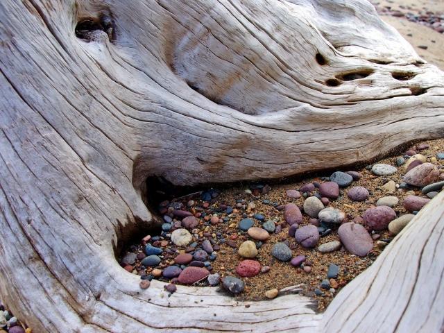 Камни под корнями