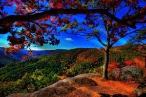 Обои Прекрасный пейзаж: Лес, Деревья, Холмы, Осень, Небо, Природа