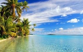 Обои Райское место: Пальмы, Пляж, Море, Небо, Природа