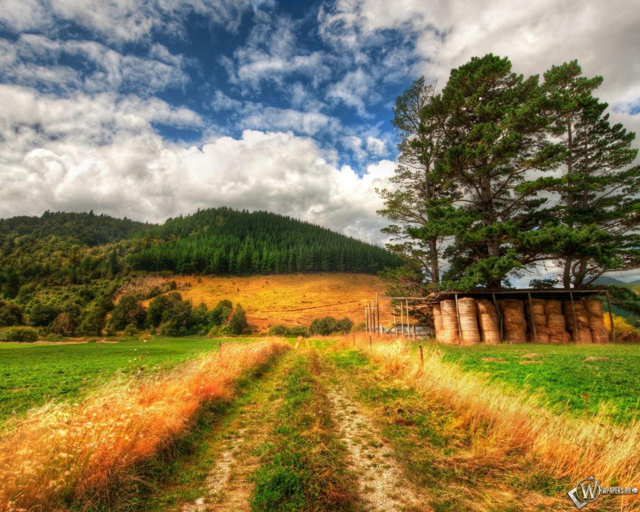 Дорога в поле 1280x1024