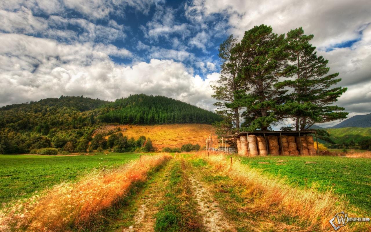 Дорога в поле 1280x800