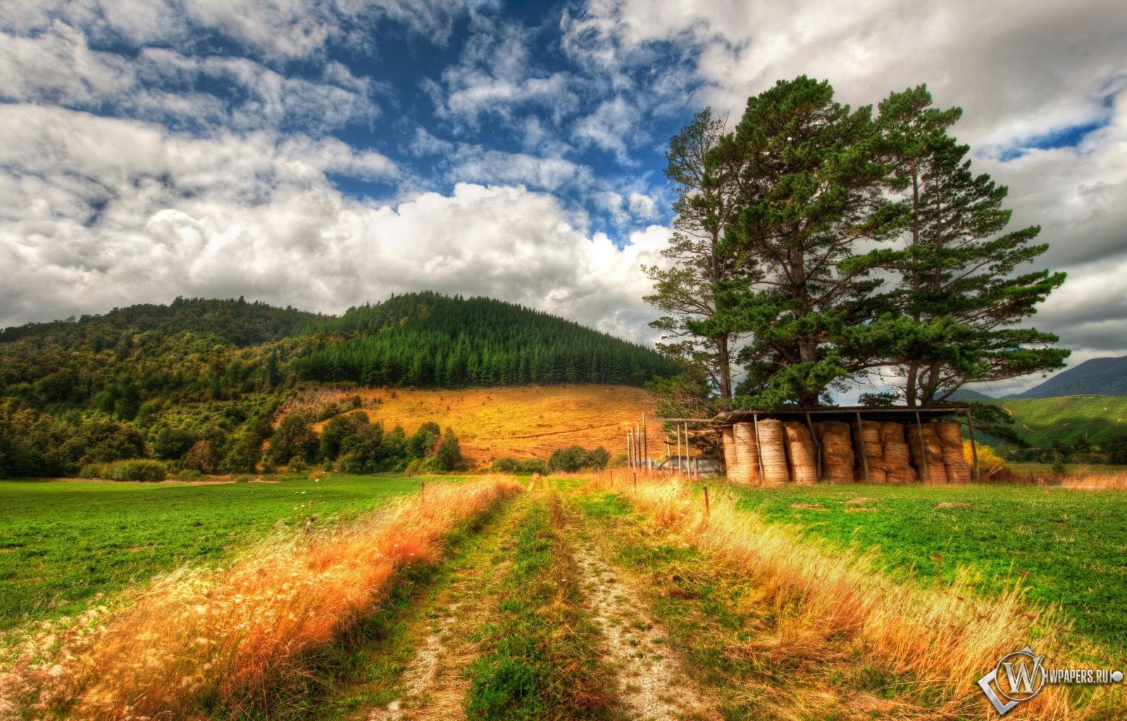 Дорога в поле 1600x1024