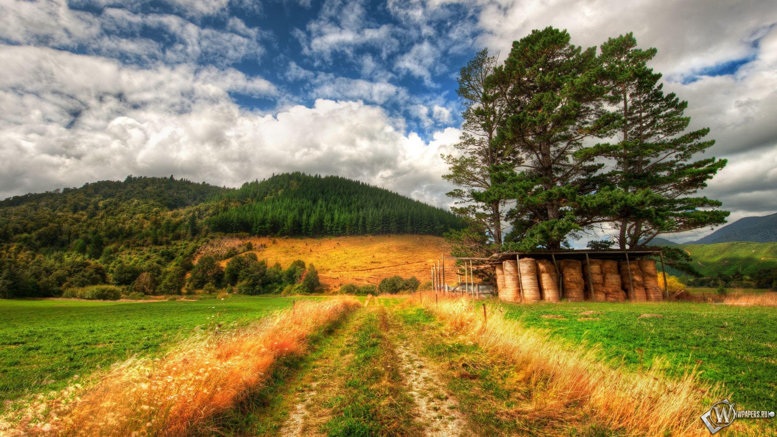 Дорога в поле 2560x1440