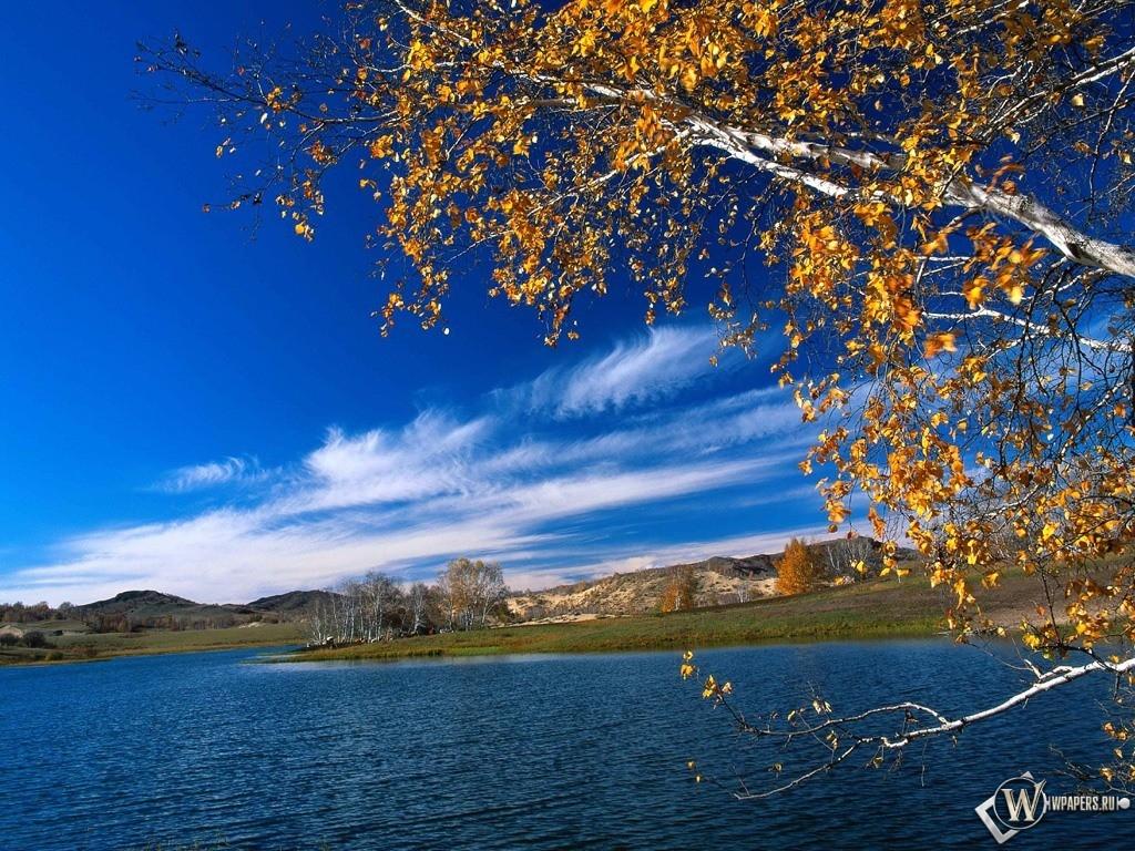 Осенняя река 1024x768