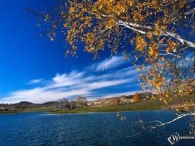 Обои Осенняя река: , Осень