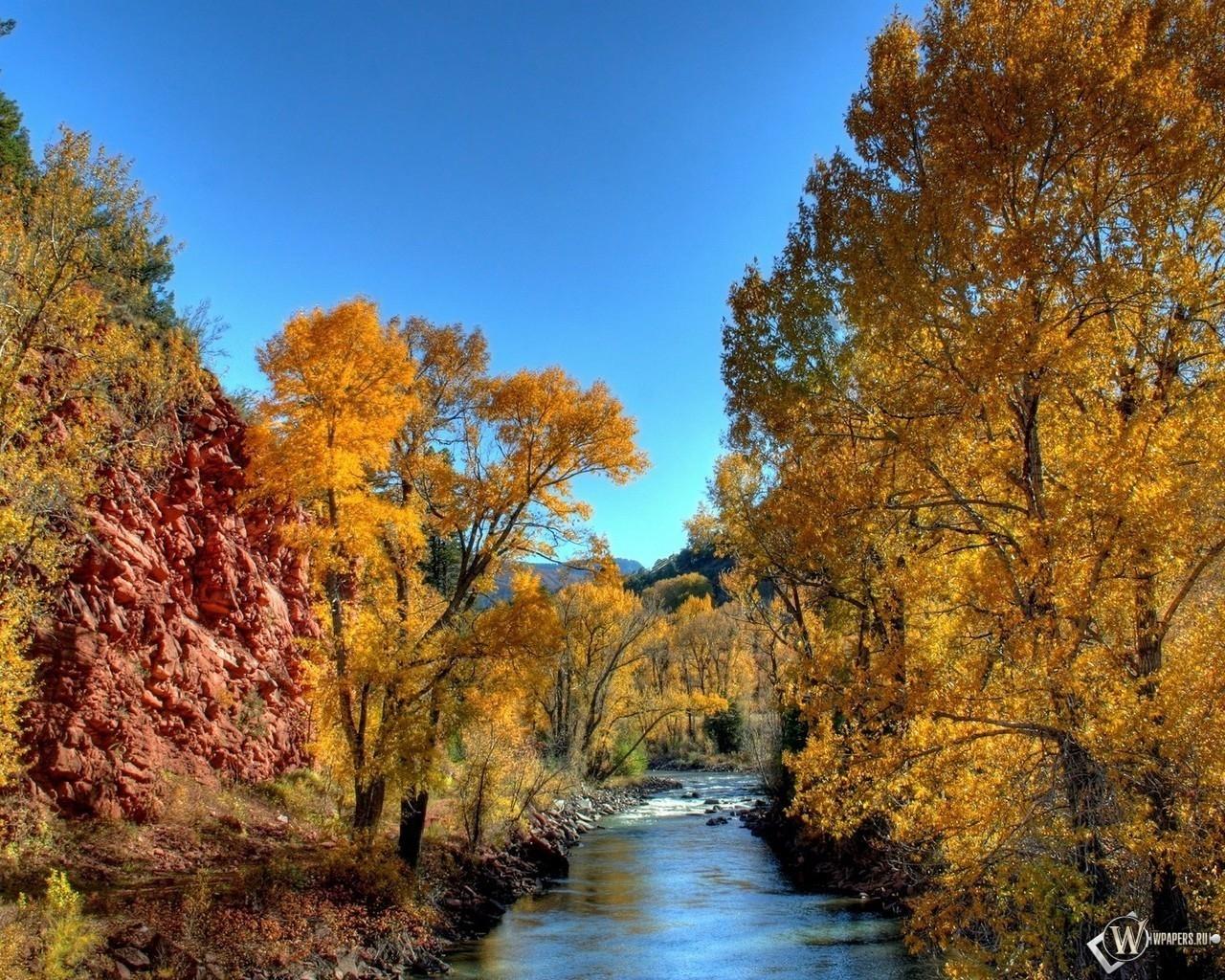 Река в осеннем лесу 1280x1024
