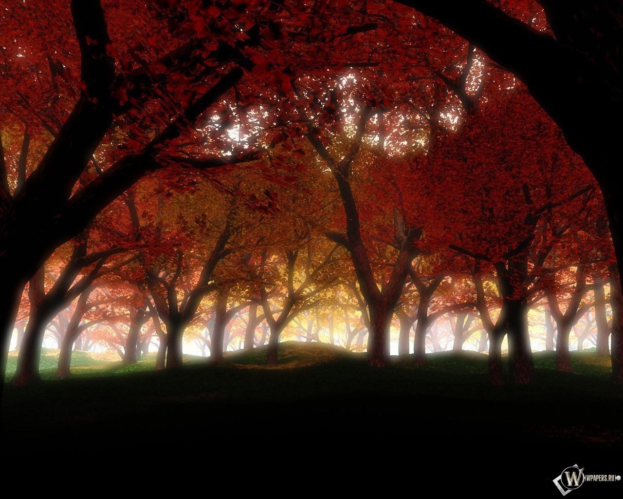 Густой осенний лес 1280x1024