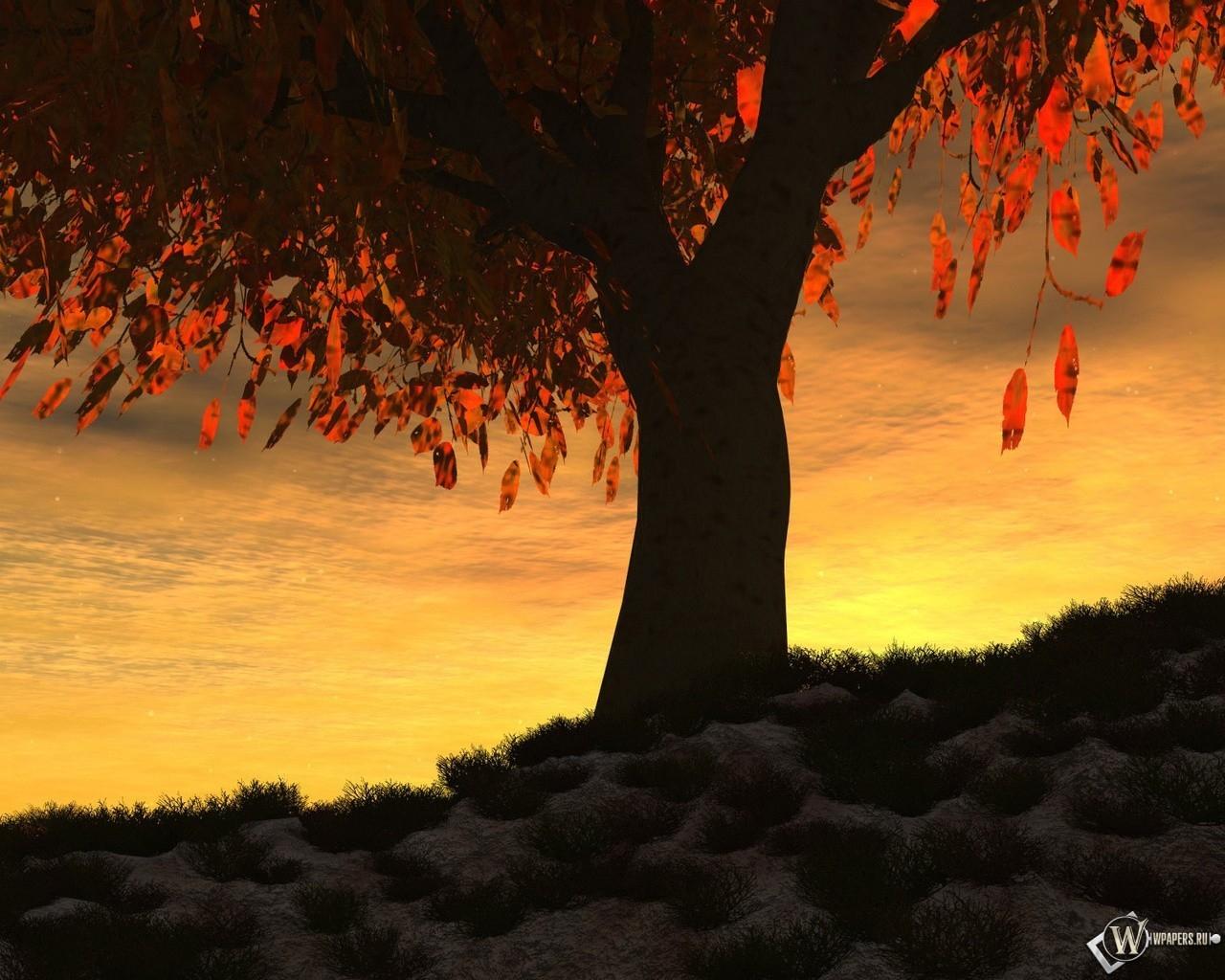Осенний закат 1280x1024