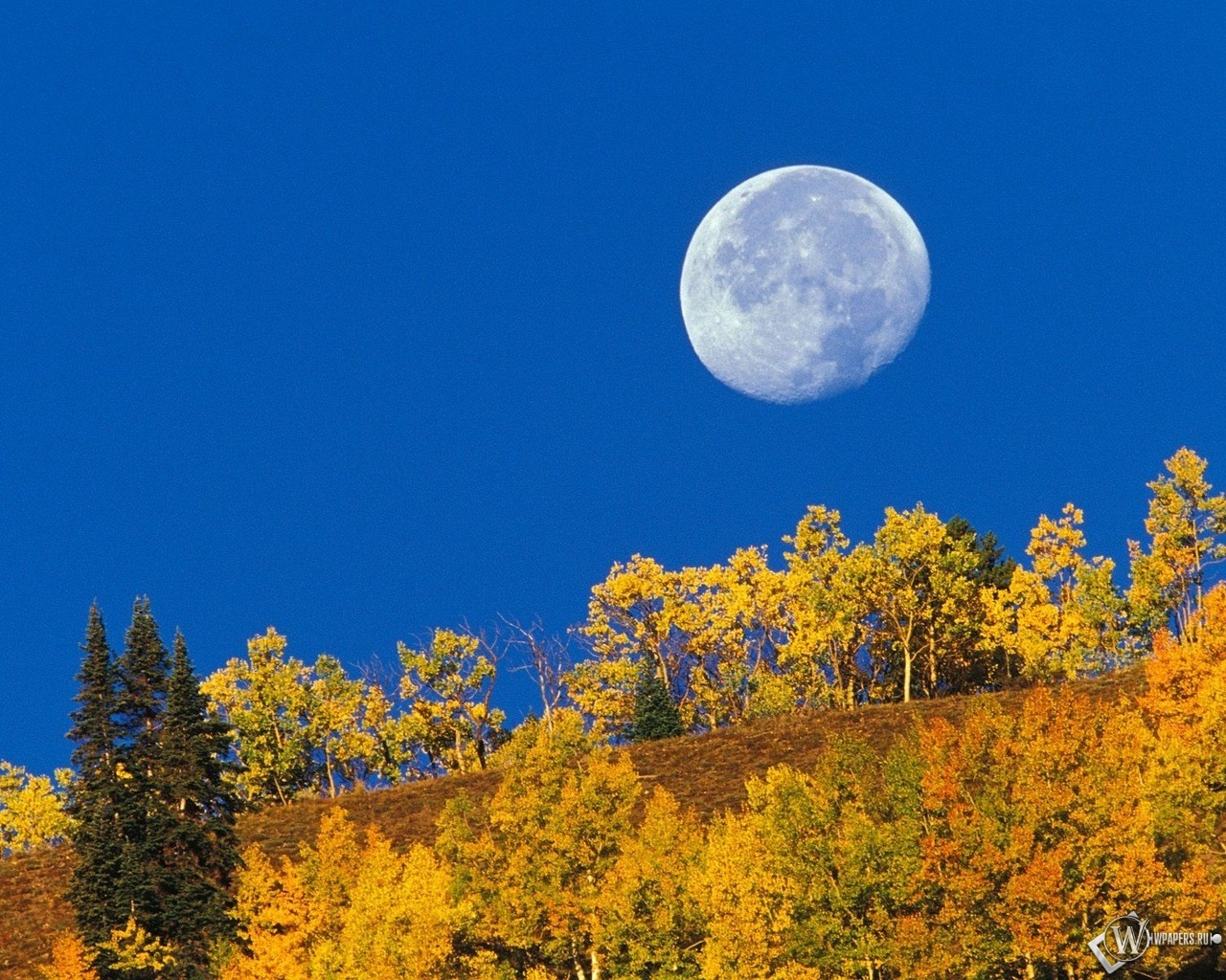 Осенняя луна 1280x1024
