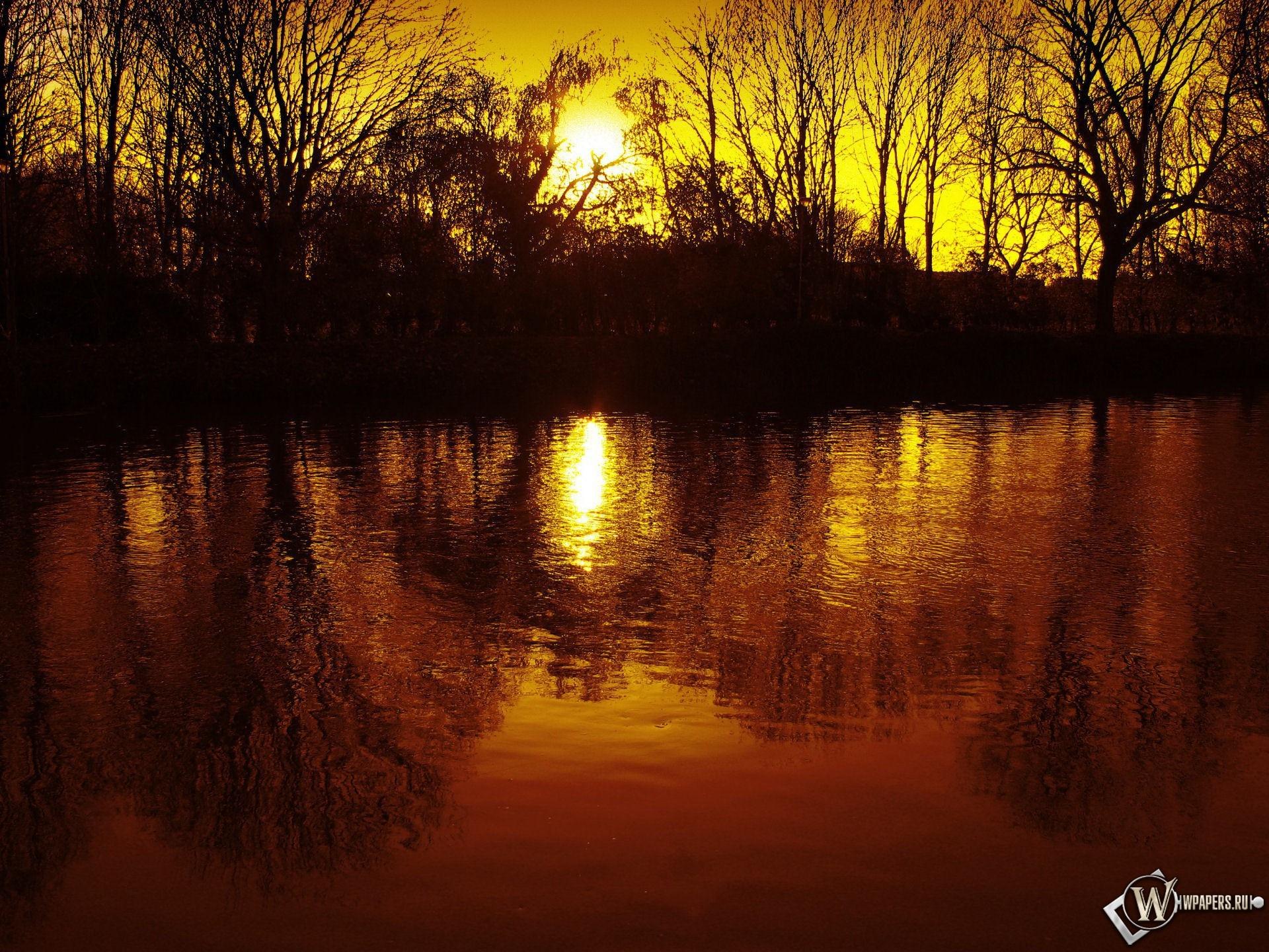 Теплые лучи солнца 1920x1440