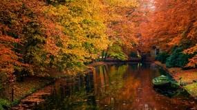 Обои Осенний пруд: Пруд, Осень, Листья, Осень