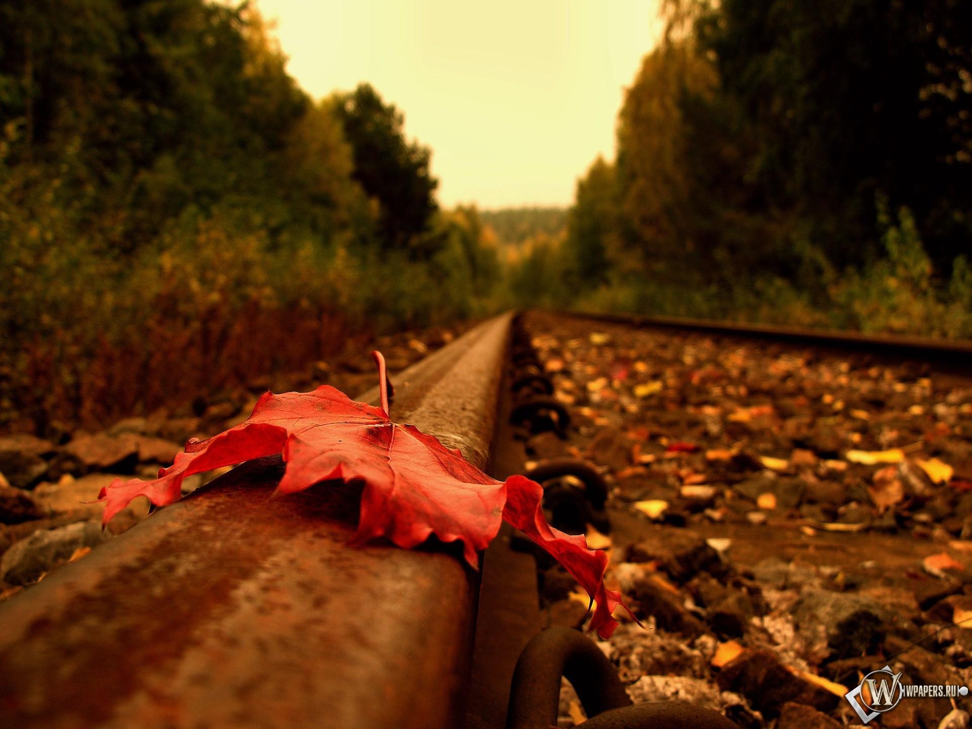 Осенний лист на рельсе 1920x1440