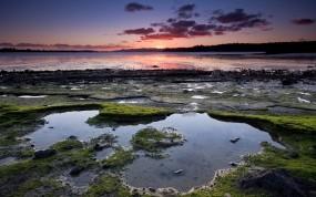 Обои Речной берег: Река, Закат, Мох, Берег, Прочие пейзажи