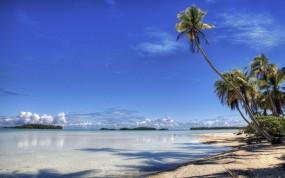 Обои Пляж: Пляж, Рай, Остров, Пальма, Берег, Прочие пейзажи