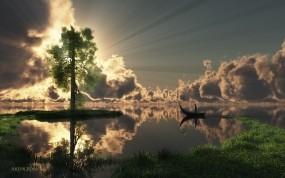 Обои Манящий свет: Свет, Лучи солнца, Дерево, Artur Rosa, Прочие пейзажи