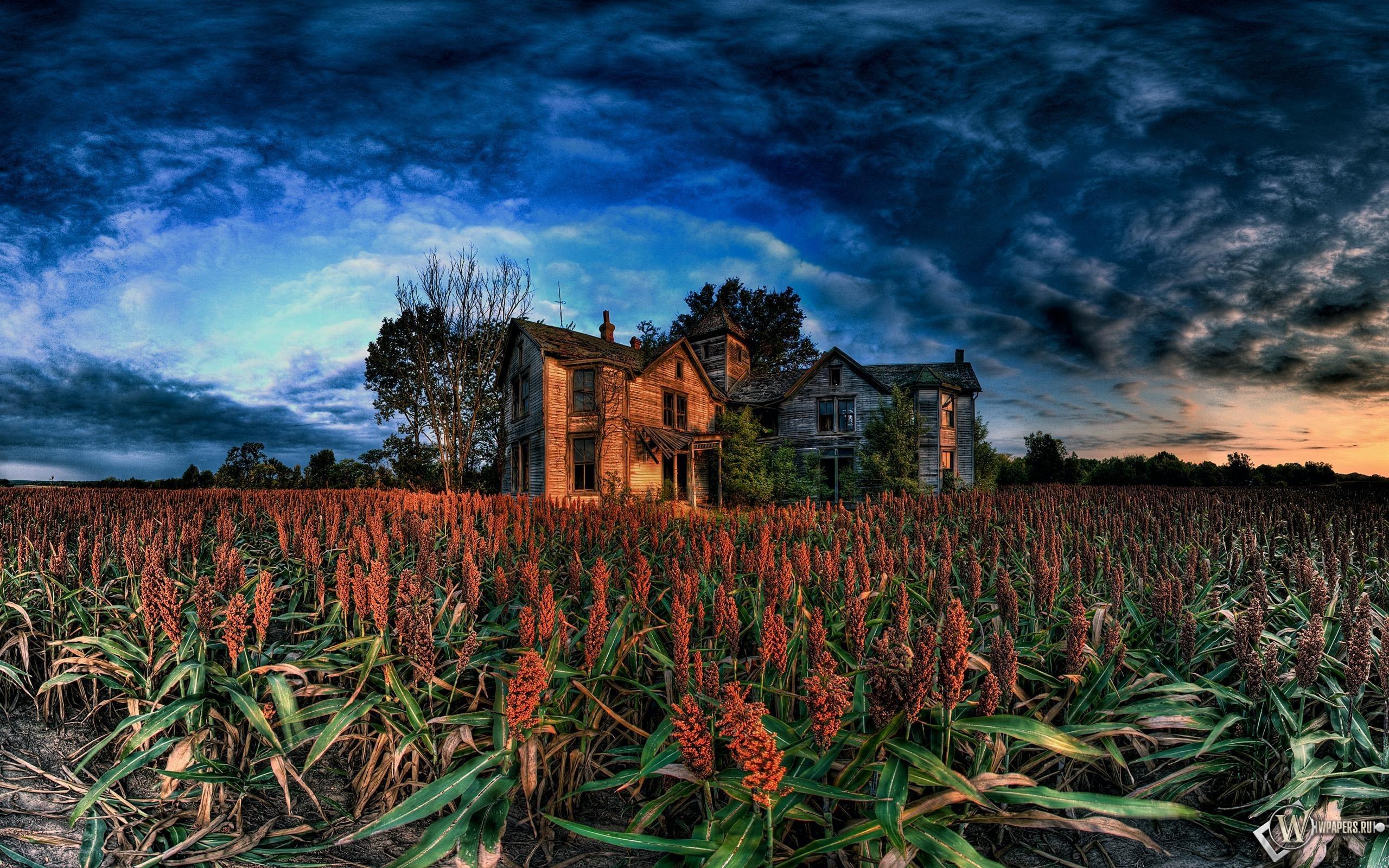 Заброшенный дом 2560x1600