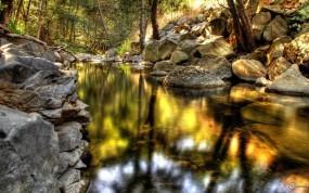 Обои Лесной ручеёк: Лес, Природа, Камни, Ручей, Прочие пейзажи