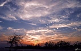 Обои Небо с облаками: Облака, Деревья, Небо, Прочие пейзажи