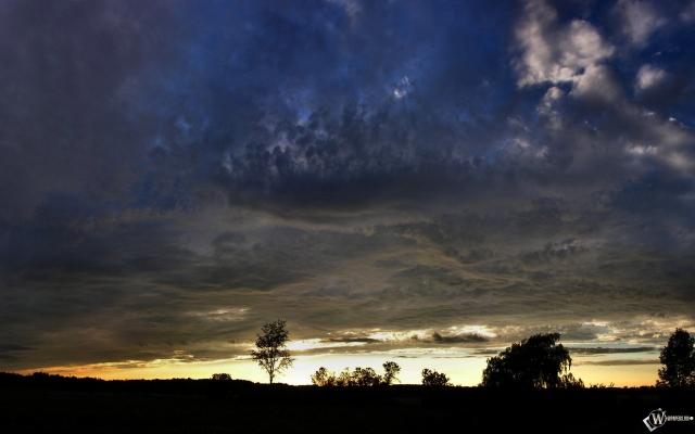 Мятежное небо